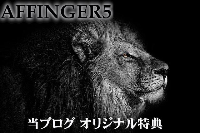 AFFINGERE5購入者特典画像